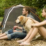 Family camping with a Golden Retriever pet dog