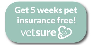 Get 5 weeks pet insurance free! Vetsure
